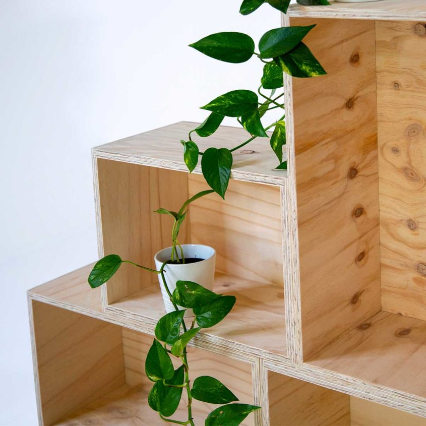 Plywood Box, Fulford Wood, Buy online